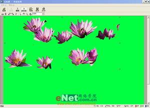 这个软件在使用时,应该细心,多在前景和背景区域划,这样才能让软...