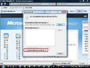 Internet Explorer Beta 2十大看点 11