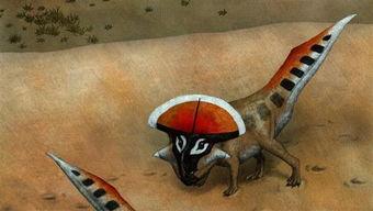 恐龙拥有各种各样的装饰物:角、鳞甲、壳皱等,但在最后一只恐龙死...