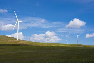 唯美的草原蓝色天空图片