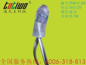 12mm蓝光LED发光字外露灯串