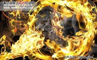 斗破苍穹之轮回穿越 金帝焚天炎