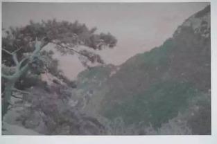 ...》;作品类型:黑白照片 手工着色;作品尺寸:70X110cm;创作年...