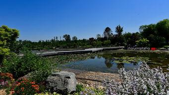 ...18摄影作品 西安植物园新园区
