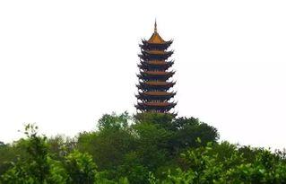 星辰塔-照母山森林公园位于重庆北部新区,是集观景、休闲、健身、科普于一...