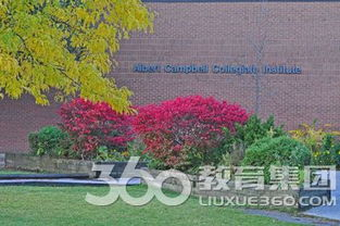 阿尔伯特坎贝尔中学位置及当地环境