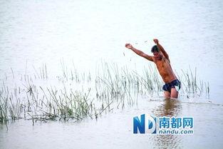 广东如何建设美丽乡村