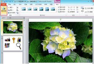 PowerPoint如何快速去除图片的背景 PowerPoint 2010怎样快速去除图...