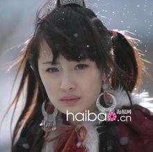 ...题,《北京爱情故事》让张歆艺在整容榜上有了名,《宫锁珠帘》的...
