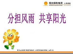 -- 中国七大保险(控股)集团之一-分担风雨 共享阳光 阳光人寿2010版...
