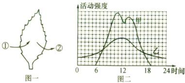 ...表不同的物质,箭头表示物质进出的方向 ,图二为该植物在夏季晴朗...