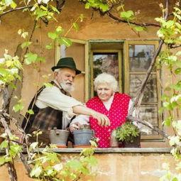 ...要一个照片,是老头老太温馨的画面,有木有