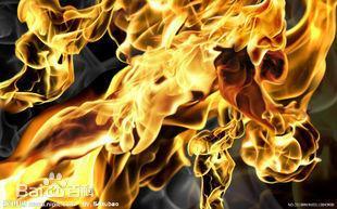 浴火之子-斗破苍穹 兽灵 降临