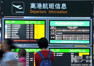 29日,旅客查看离港航班信息.-海南 海口美兰机场航班进出恢复正常