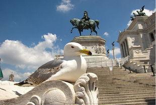 ...之城罗马 探寻千年历史遗迹