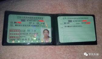 用的号码,用来查询咱们这个驾驶人所有的违章、变更、换证、