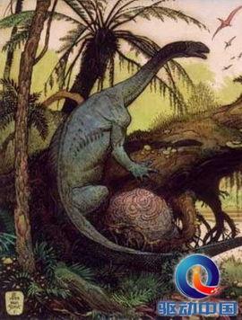 但在最后一只恐龙死去之后的至少数百万年内,南极大陆仍旧保持了相...