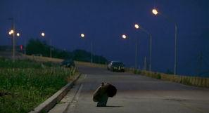 遥远的路途总是会害怕孤单地走