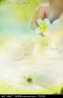 翻开的书本玉兰花菊花构成的背景图片 605807 自然风景 漫画插画