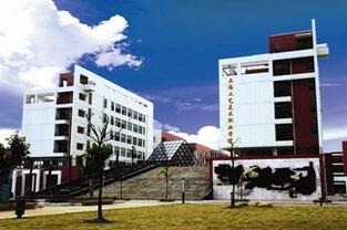 上海 校企培养打工小皇帝 培训机构接手大学生职场教育