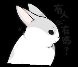 表情 line小灰兔子表情包line小灰兔子表情包下载 表情