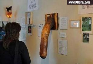 男性丁丁博物馆 雄伟丁丁又长又粗令女人把持不住