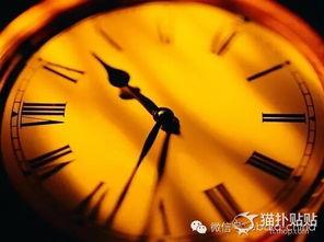 ...有24小时,你现在几点