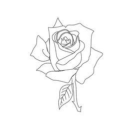 如何画玫瑰花简笔画