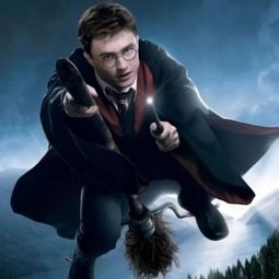 ...哈利波特 大难不死的男孩