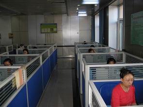市烟草专卖局呼叫中心的工作人员都紧张忙碌地联系业务.-窗口单位...