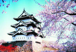 一路追香游日本