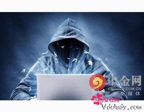 ...网络放毒黑客 终止技术宅男的 个人秀