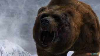 坎贝拉危险狩猎2013及狩猎包