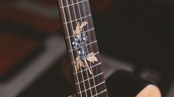 ...的比例镶嵌在了吉他背板上.在同级别面单产品上还是很少见的,据...