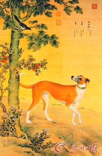 狗最早被驯化或起源于华南