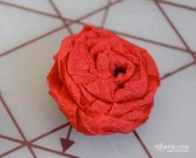 ...iy卫生纸手折玫瑰花过程图解