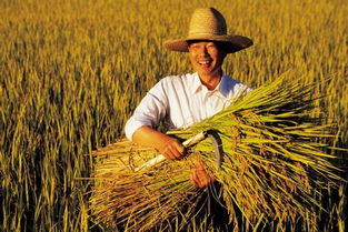 ...,培育新型职业农民百万人以上