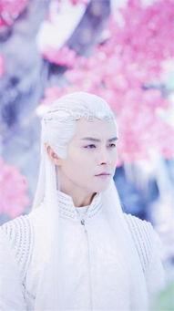 释和员-《幻城》播出已接近一半,马天宇饰演的樱空释与哥哥因