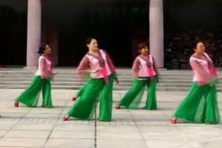 ...体抒情 变队形广场舞九儿 茉莉花絮广场舞习舞