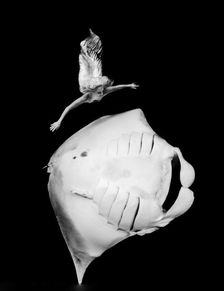 ...g with manta ray