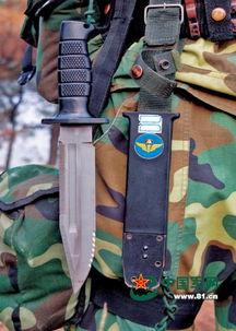 最衰神器-单兵装备,挥戈破阵   伞,是空降兵区别于其他兵种的