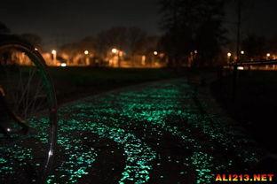 每天都走星光大道 荷兰发明黑暗中发光的自行车道路