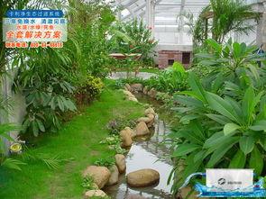 滁州鱼池设计 锦鲤鱼池过滤设备 家庭鱼池水处理三年不换水