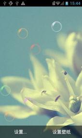 唯美花朵动态壁纸免费下载 唯美花朵动态壁纸手机版下载 翼风安卓应...