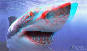 图为:色分红蓝3D图-告别水族箱 爱国者PMP887D 裸眼3D技术解析