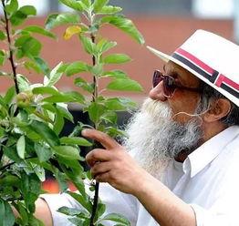 ...至死 65岁酷老头,弄了个少女心的花园