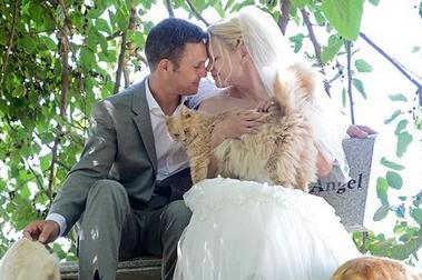 地后,汤姆要求女友闭起双眼,之后带着她走过田地.她睁眼时,看到...