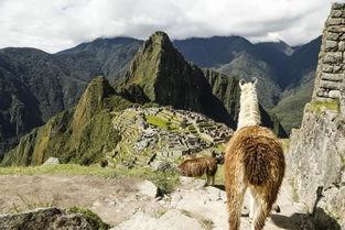 秘鲁印加文明春节跨年4日游 库斯科 印加神圣山谷 马丘比丘城堡