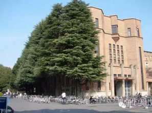 在京都大学念法学是一种怎样的体验