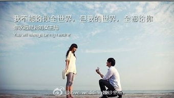 ...wedding教你表白~-love wedding婚纱会所的微博 微博